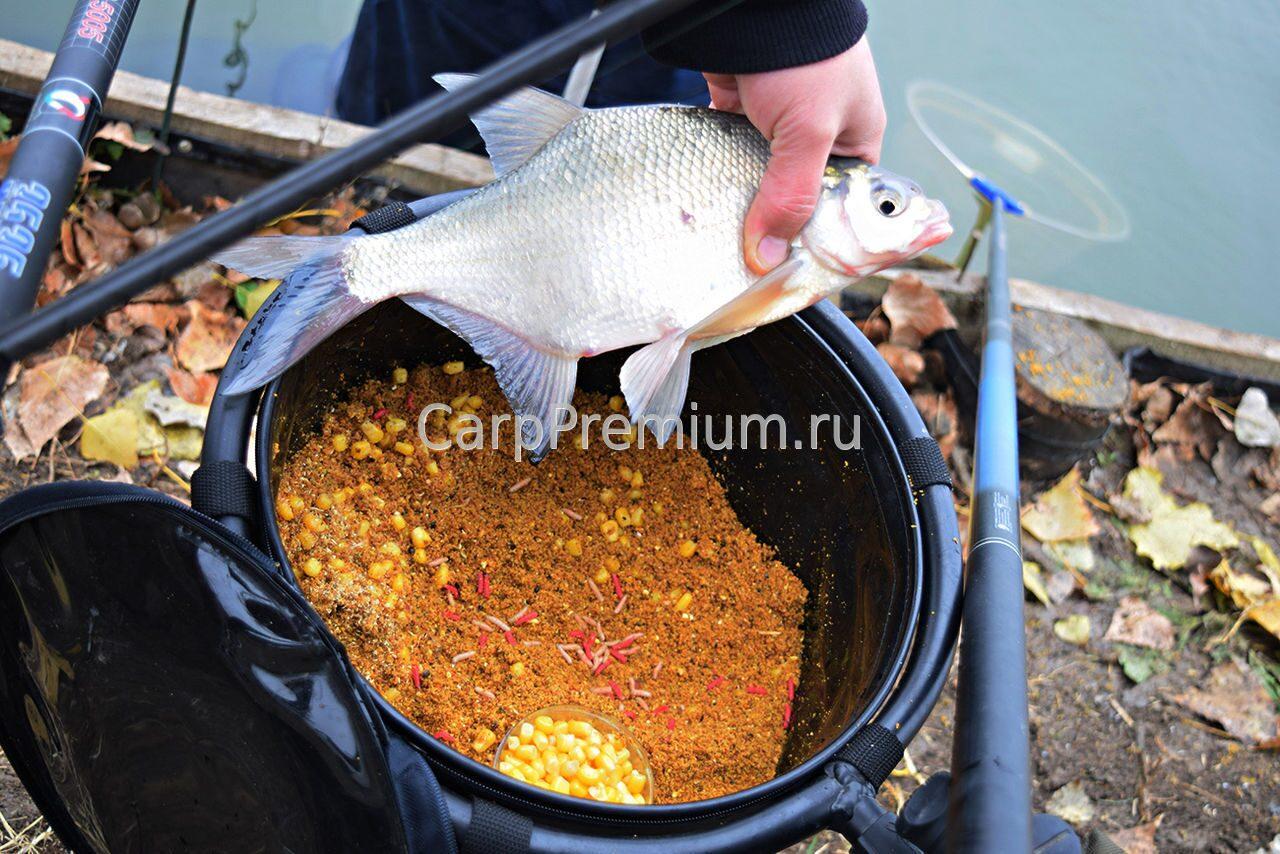производитель прикормки для рыбы